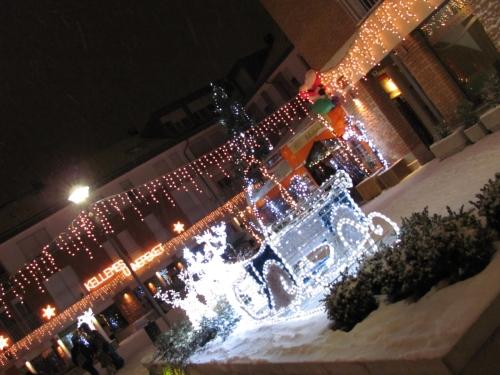 2010 december 025