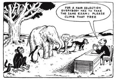 Az igazságos kiválasztás érdekében mindenki ugyanazt a feladatot kapja: fel kell mászni arra a fára.