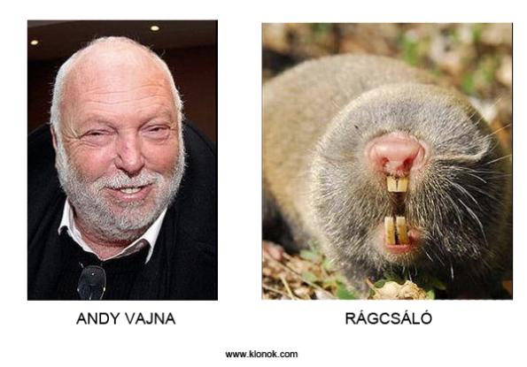 andy_ragcsa