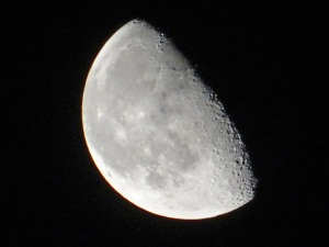 half-moon-1344413127Kdi