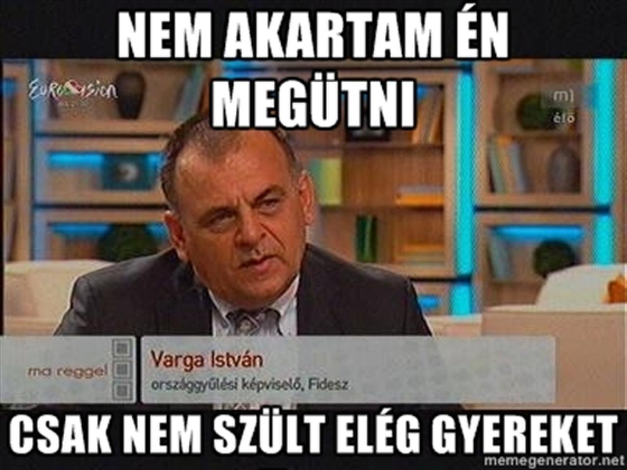 varga_istvan_fidesz